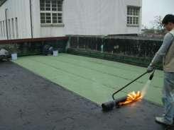 屋顶堵漏 (4)